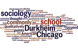 Durkheim_chicago_school_2.png