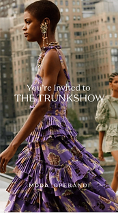 Moda Trunkshow Screen Shot 2020-11-19 at