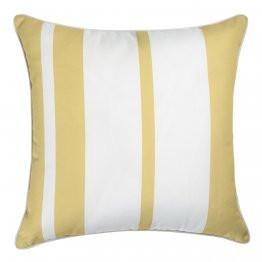 cushion rapee otdr.jpg