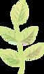 leaf01.png