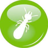 diagnostic termites, explication du diagnostic