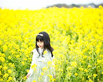 012_R020215No2.jpg