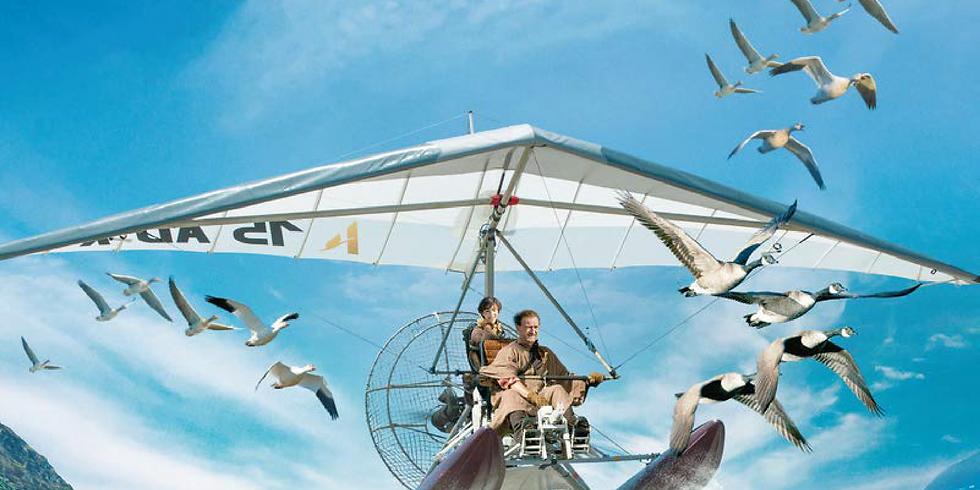 Cinéma en plein air - Donne moi des ailes