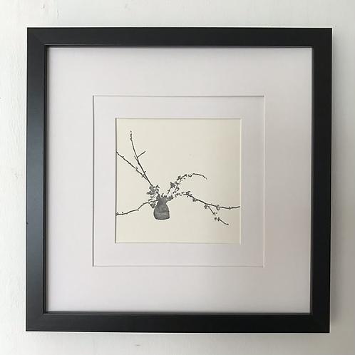 'Quince Blossom' framed print