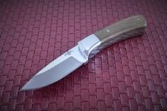 0149 lg coyote 40cp mesquite.jpg