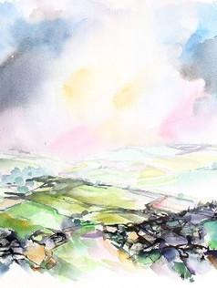 Pembrokeshire Fields