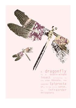 Wikipedia-plakat - DRAGONFLY