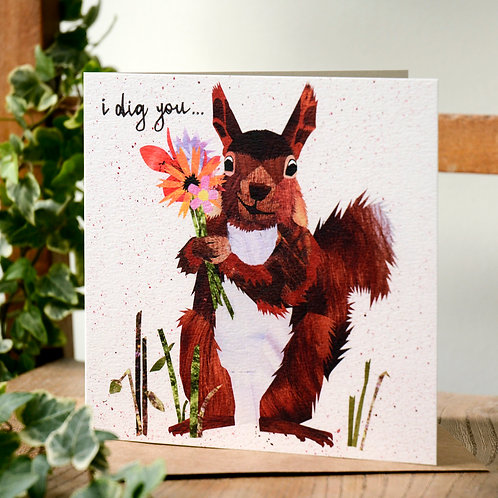 I Dig You Romance Card Red Squirrel