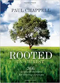 rooted.webp