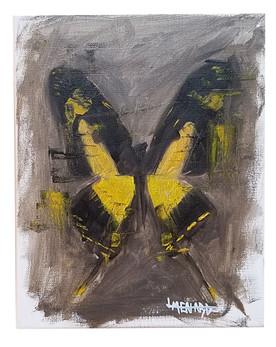 Butterfly Study #4