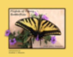 COVER_2020 Flights of Fancy_Butterflies.