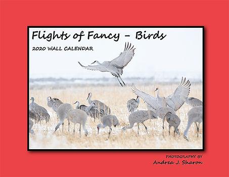COVER_2020 Flights of Fancy_Birds.jpg