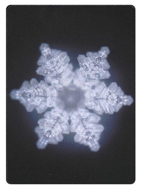 Set de Cartas Cristales de Agua Masaru Emoto 48 Imágenes