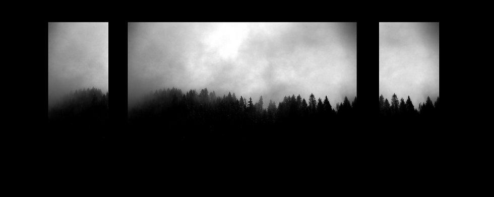 forêt triptyque.jpg