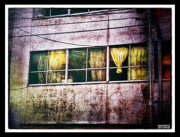 tideaux jaunes.jpg