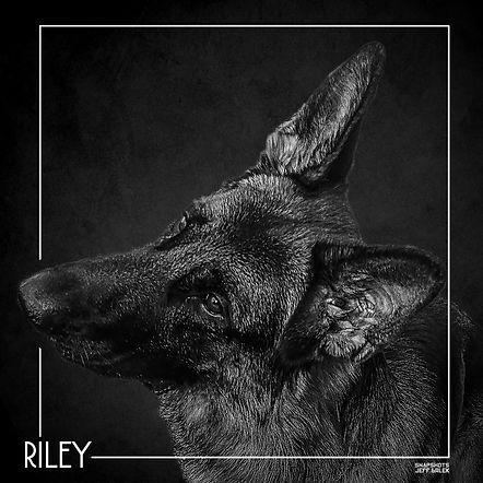 RILEY PORTRAIT 2.jpg