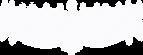 runecaller logo.png