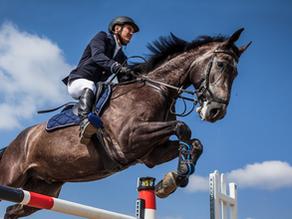Conheça o mercado milionário de seguro para cavalos