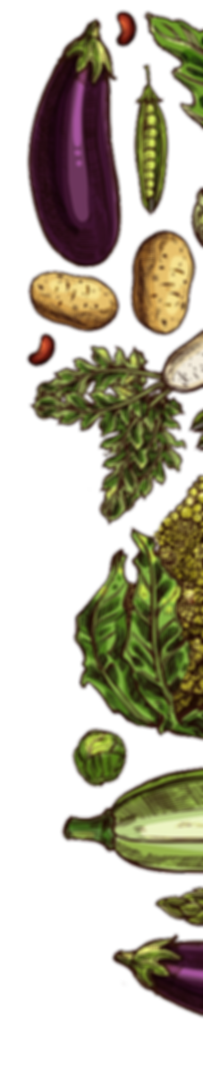 Right Plants.png