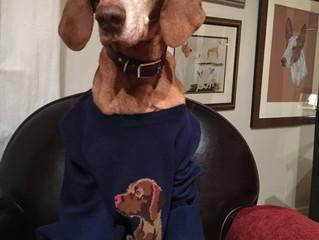 Rescue Update - Grandpa