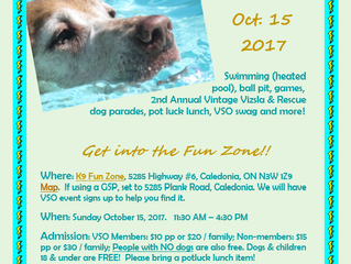 Fun Day - Rescheduled to October 15th!