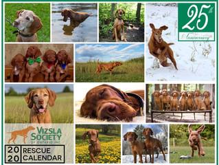 25 years of Vizsla Rescue Calendars