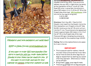 Impromptu Vizsla Meetup, Oct 1/17!