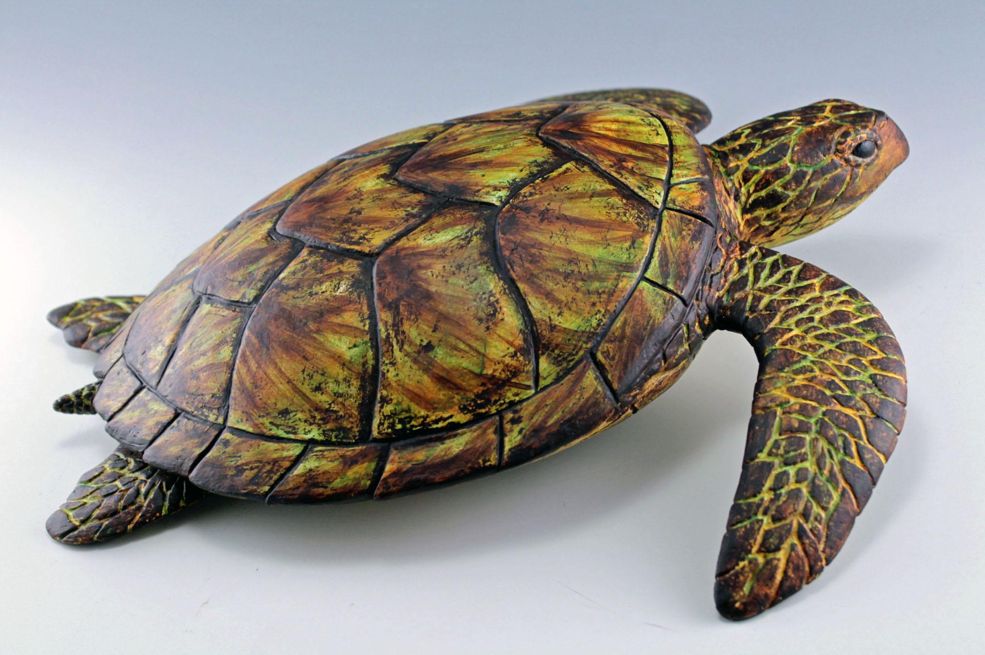 Hawksbill Sea Turtle.jpg