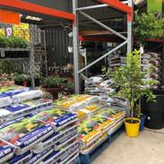 Garden1-1000px.JPEG