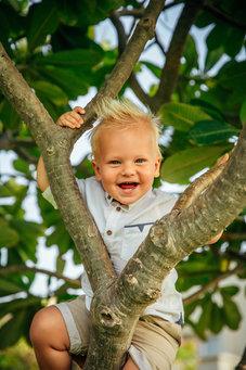 Cute kid in tree