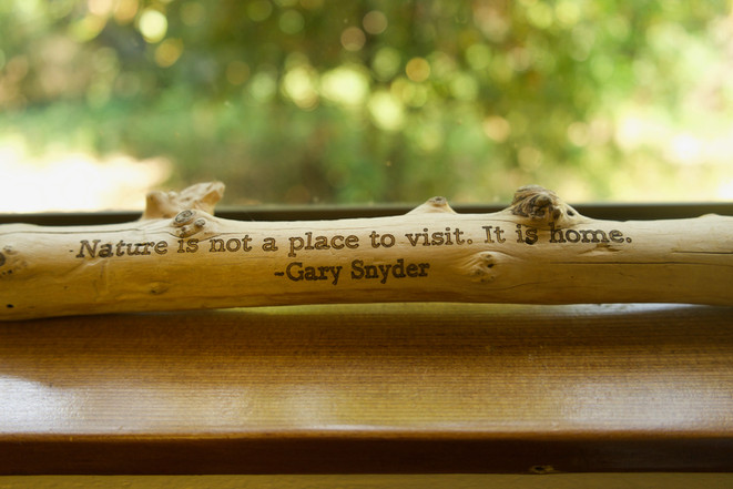 """Nature is not a place to visit. It is home"" quote"