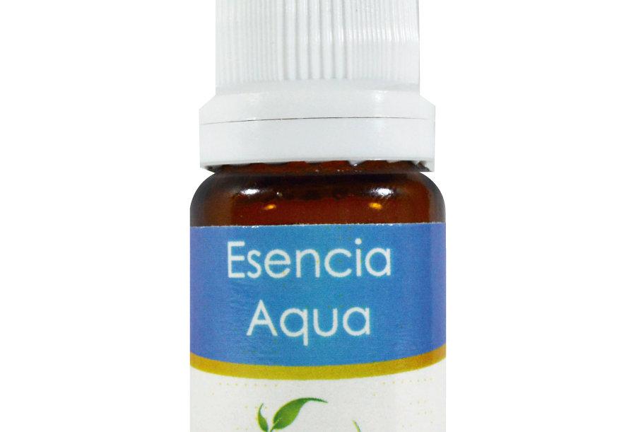 Esencia aromática basics Aqua 10 ml.