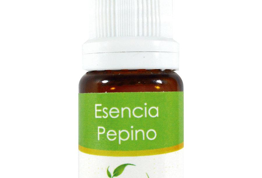 Esencia aromática basics pepino 10 ml.