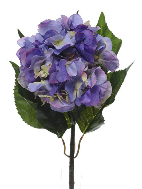 EXTRA LARGE LAVENDER HYDRANGEA