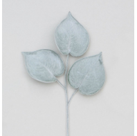 58CM PHILODENDRON GREEN