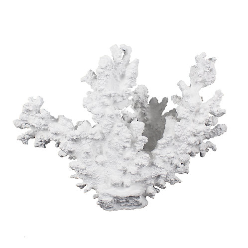 LARGE WHITE CORAL