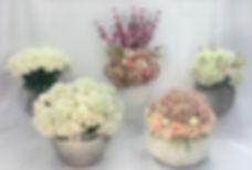 IMG-2202-Facetune-07-03-2020-10-18-17.jp