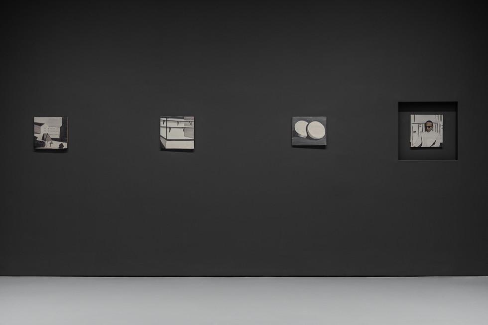 Palazzo Grassi - Luc Tuymans - La Pelle