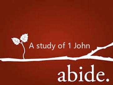 Abide 1 John.png