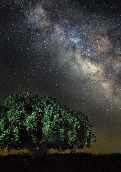 Night Sky at Fort Griffin