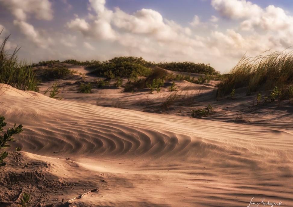 Sand Dunes at Galveston