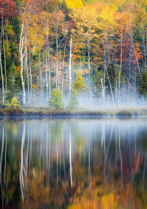Reflections of Fall