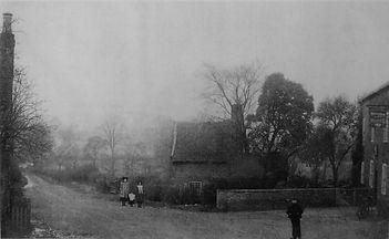 Waggon Horses 1901 Photo.jpg