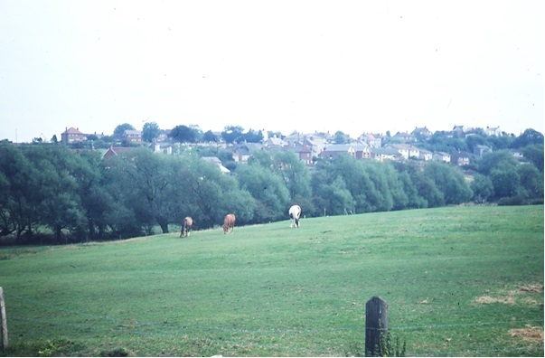 Rempstone Road View