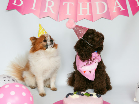Cleos första födelsedagstårta