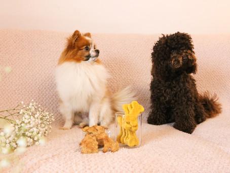Veganska hundben