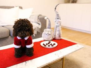 Rödbets julgodis + hundglögg till 1:a advent