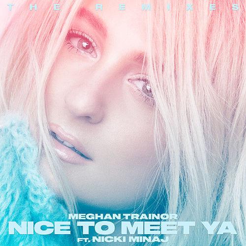 Meghan Trainor - Nice To Meet Ya (Zookepper Remix) (Stem Mix & Master)