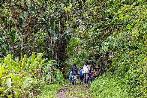 kids walking maqui.jpg