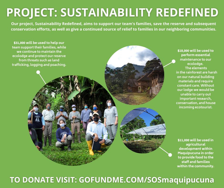 PROJECT_ SUSTAINABILITY REDEFINED (1).pn